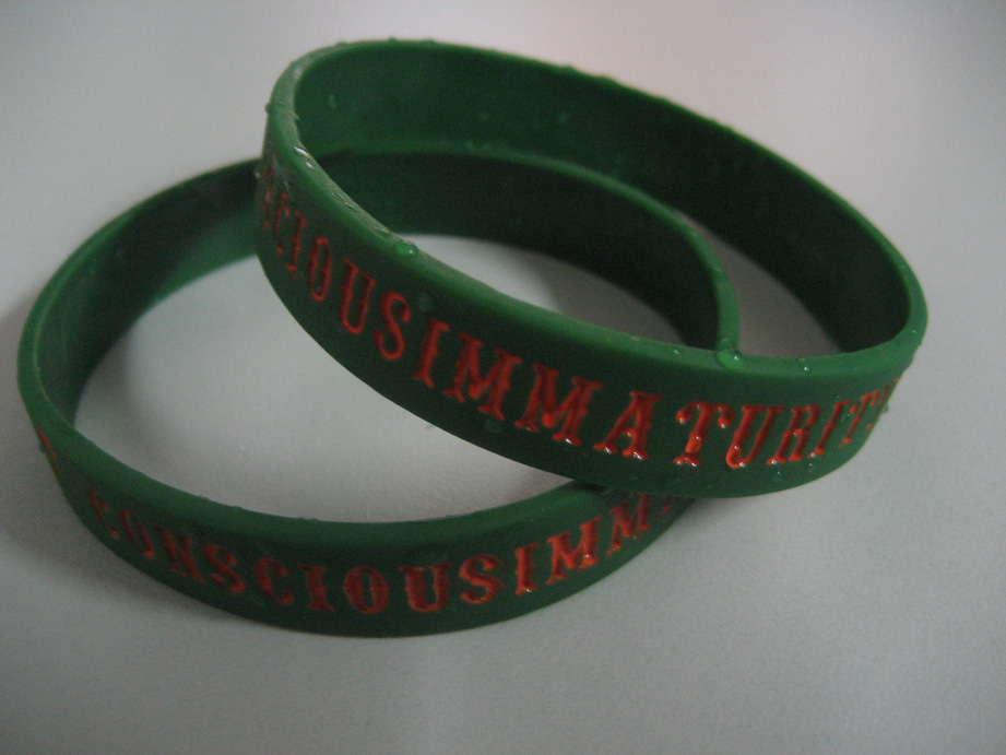 Circle of Consciousness Wristband